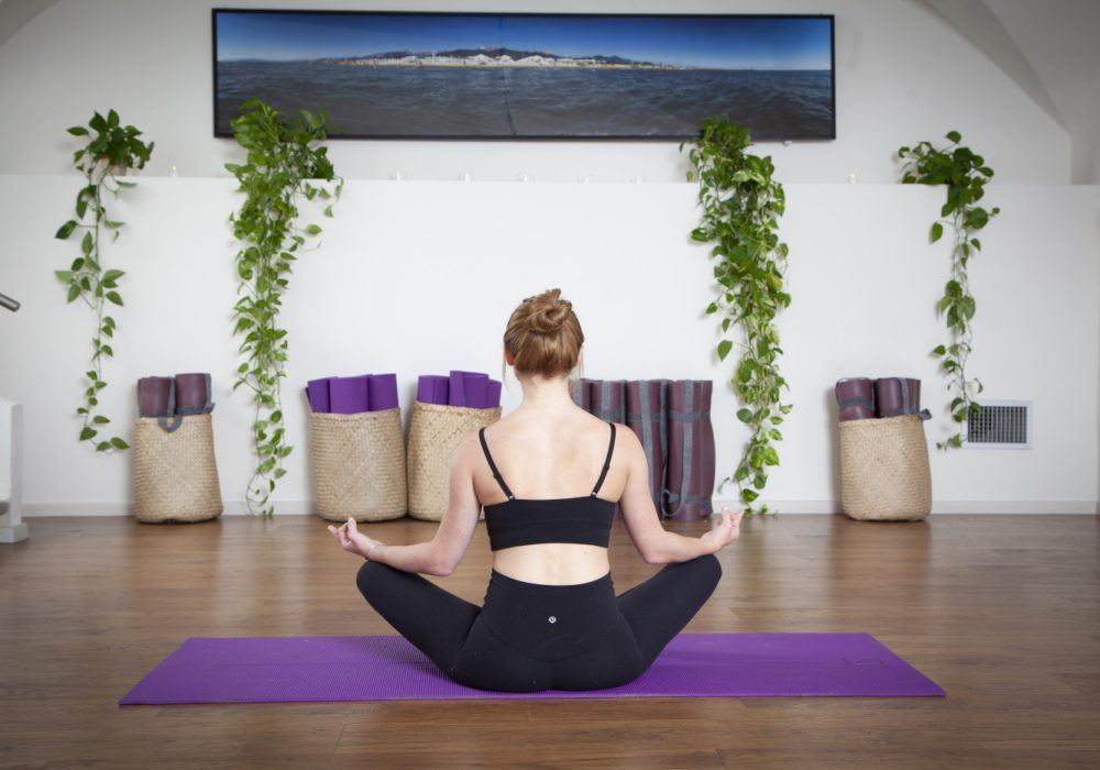 Wellness Courses